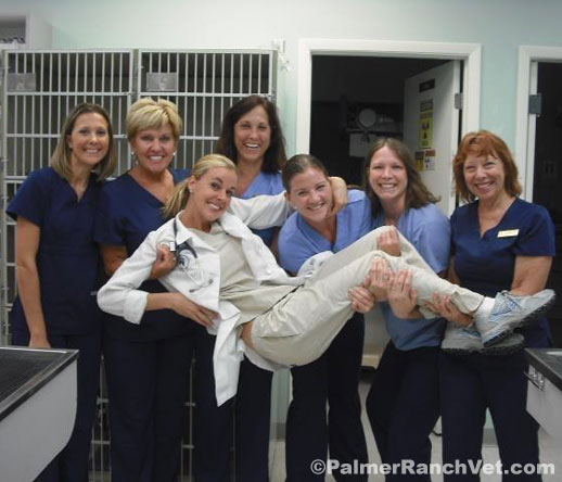 palmer-ranch-animal-clinic-staff